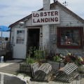 lobsterlandingshop