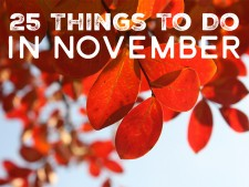 25 Things to Do in November 2015