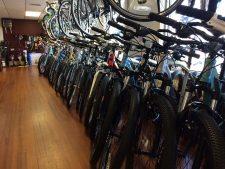Niantic Bay Bicycles, Niantic