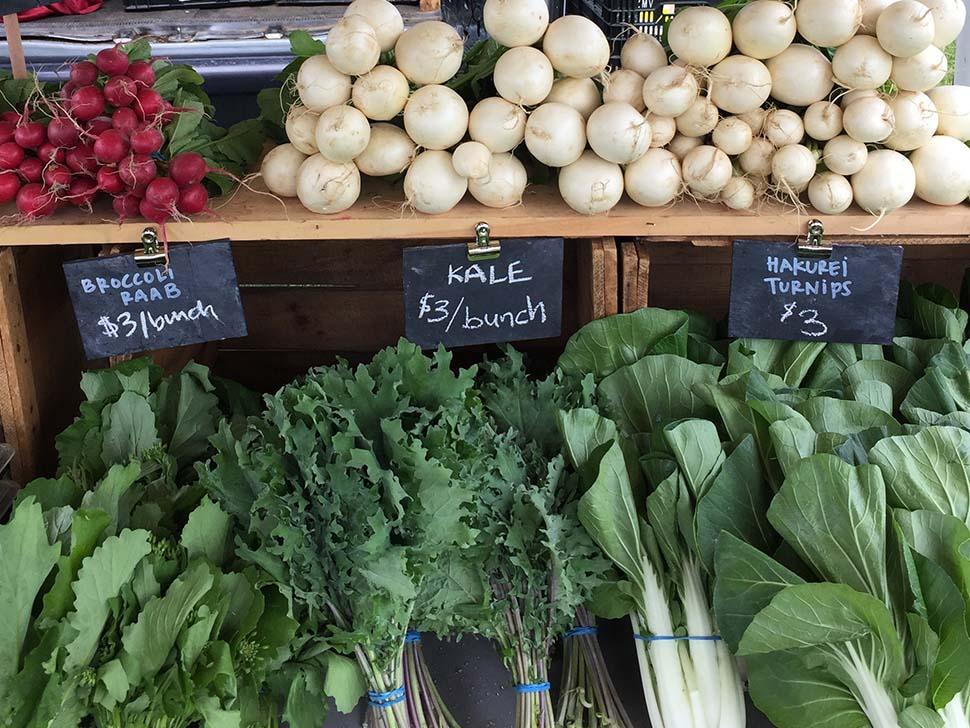 Farmer's Markets 2017
