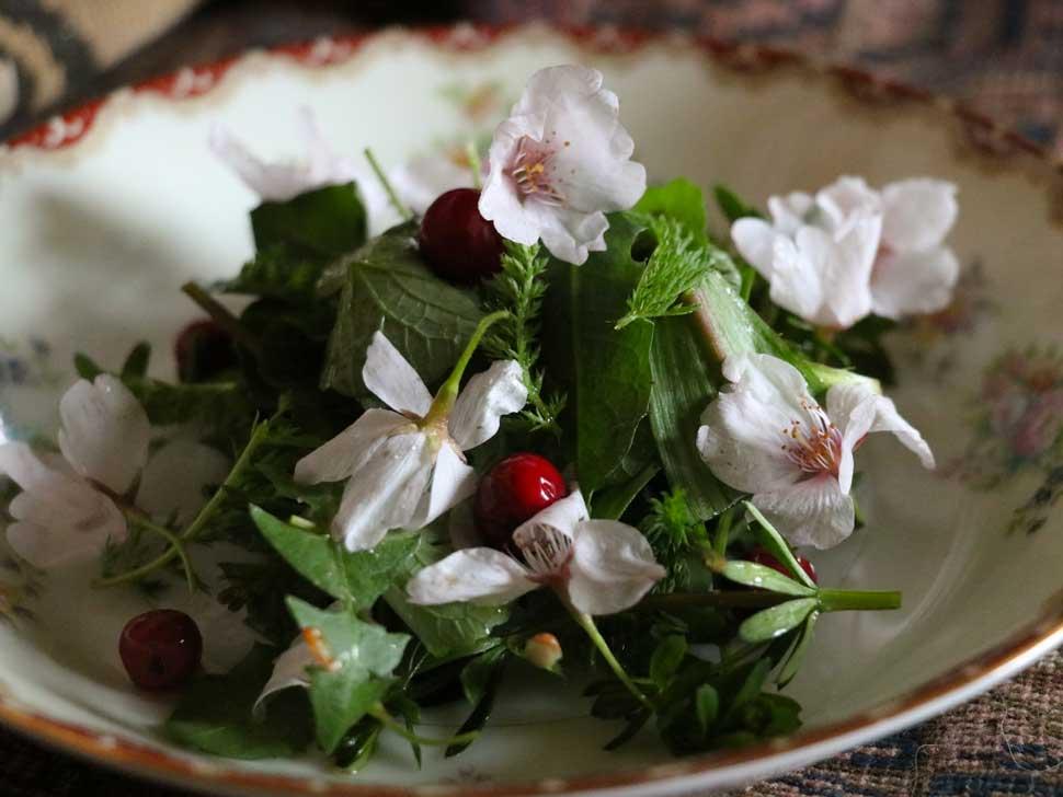 Oink's Foraged Salad