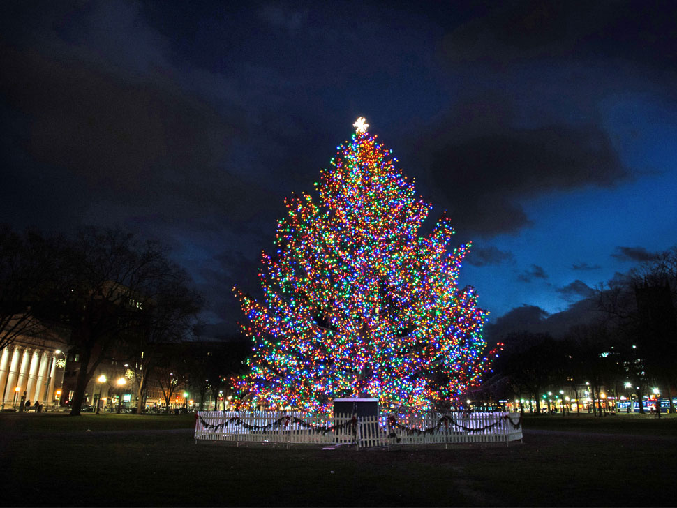21 Things To Do for the Holidays in New Haven