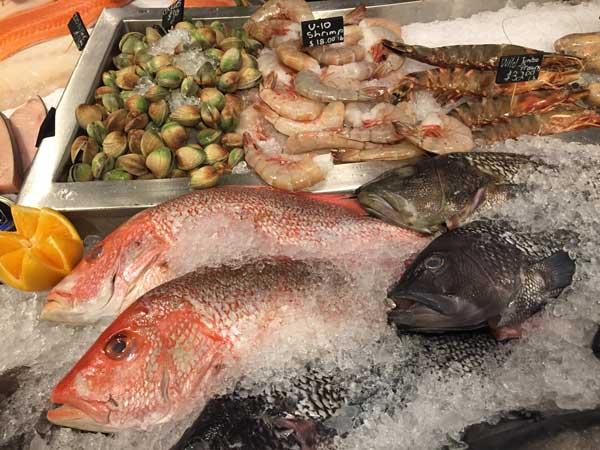 fish600