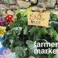 Farmers' Markets on the CT SHORELINE