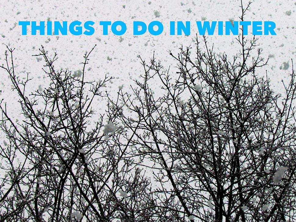 winter things to do
