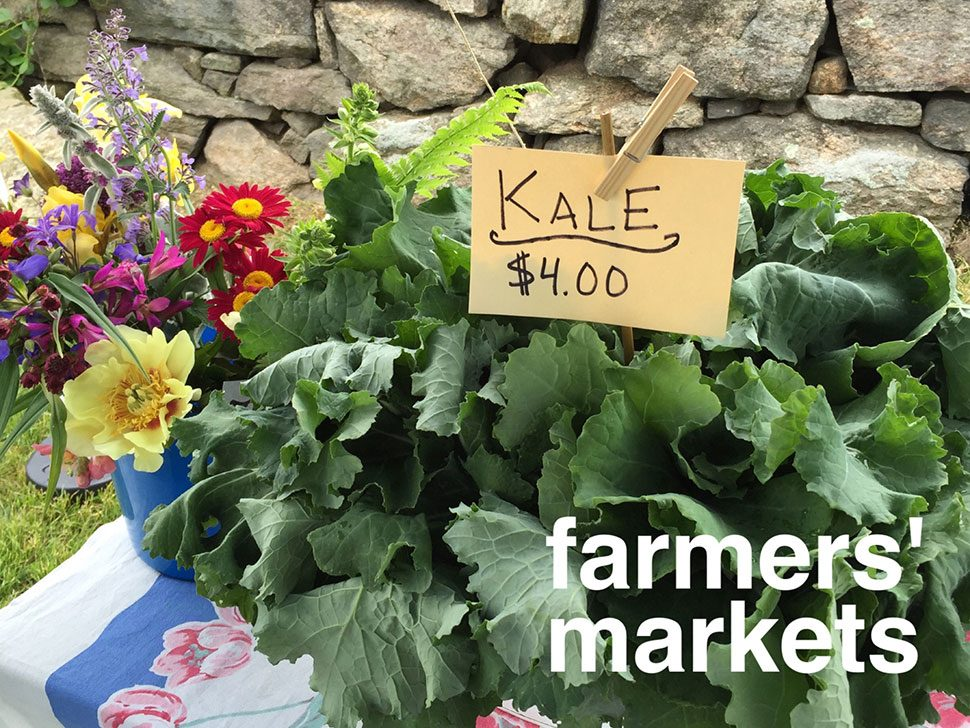 Farmers' Markets on the CT SHORELINE
