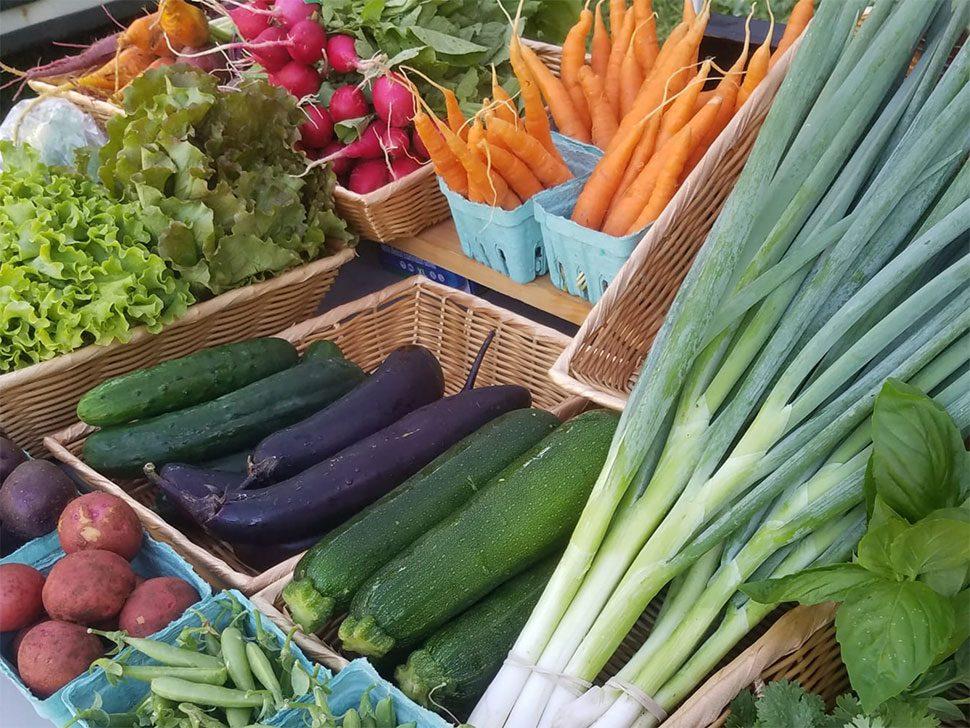 dudley farm market